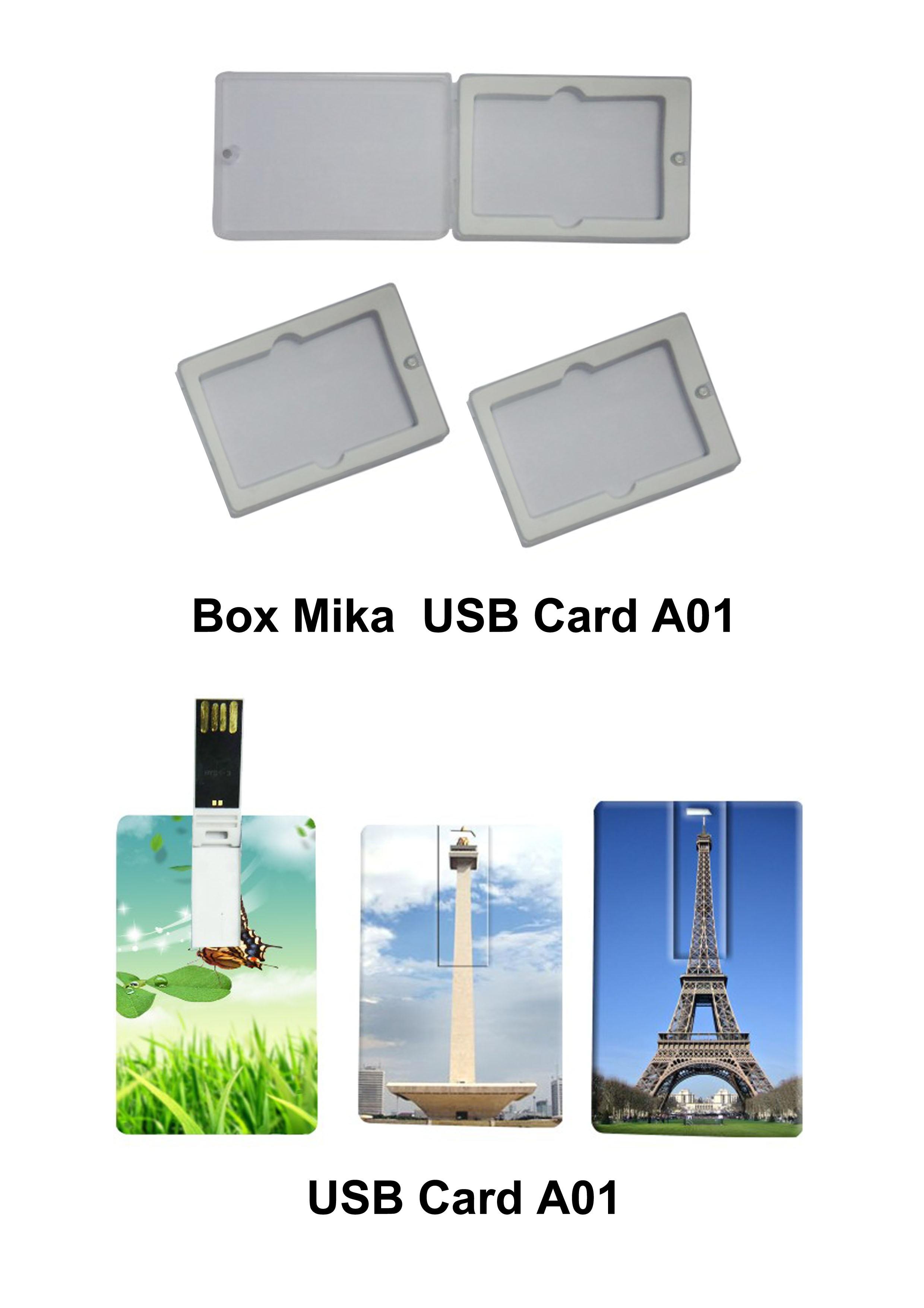 sample flasdisk kartu